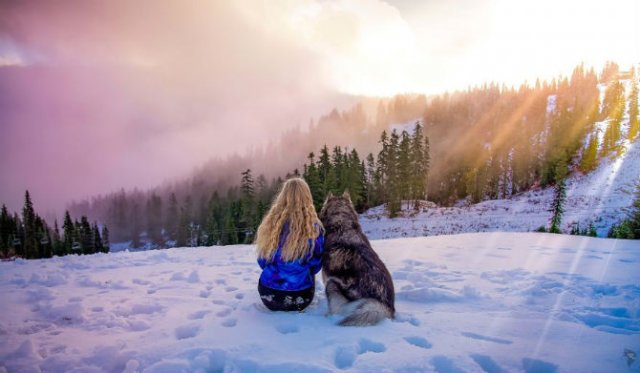 Povestea lui Kyro, un husky slavator - Poza 14