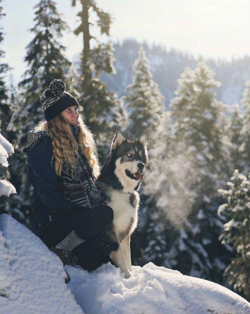 Povestea lui Kyro, un husky slavator - Poza 3
