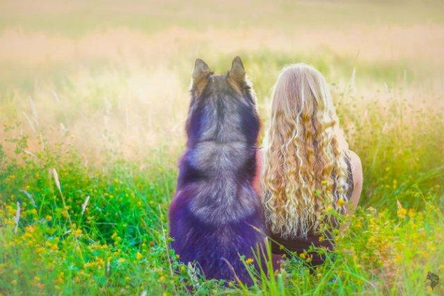 Povestea lui Kyro, un husky slavator - Poza 6