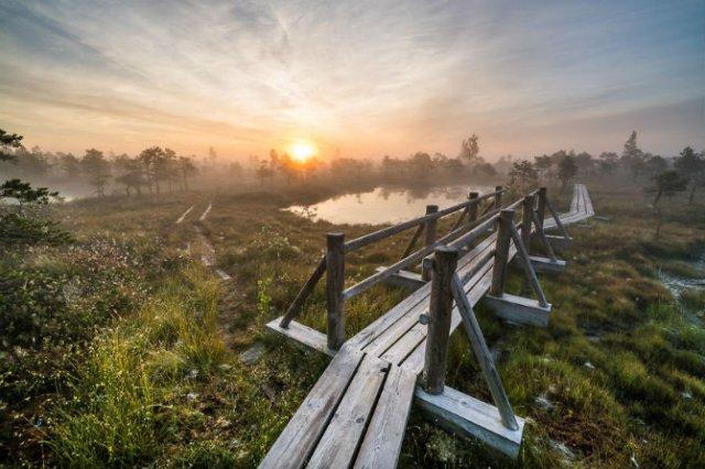 O toamna magica in cea mai frumoasa zona mlastinoasa - Poza 3