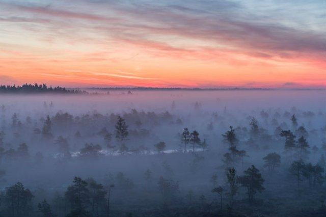 O toamna magica in cea mai frumoasa zona mlastinoasa - Poza 8