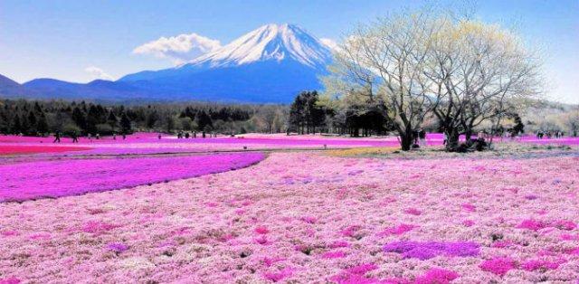 Curcubeie tangibile: 10 colturi ale lumii de un colorit incredibil - Poza 6