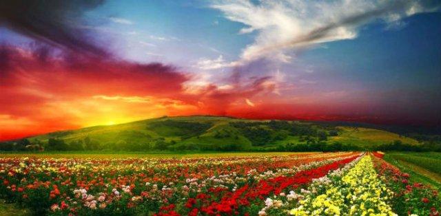 Curcubeie tangibile: 10 colturi ale lumii de un colorit incredibil - Poza 8