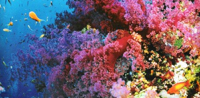 Curcubeie tangibile: 10 colturi ale lumii de un colorit incredibil - Poza 9