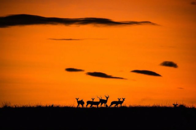 Nat Geo Travel: 10 fotografii care iti taie respiratia - Poza 10