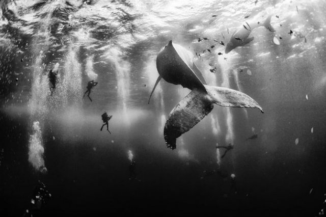Cele mai bune fotografii National Geographic Traveler Photo Contest 2015