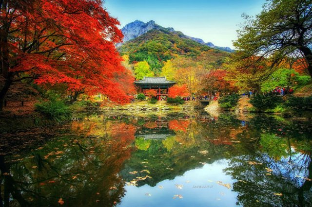 Peisaje superbe oglindite in apa - Poza 12