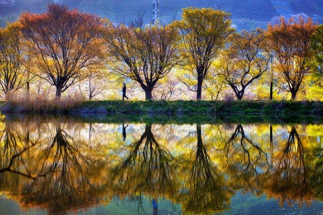 Peisaje superbe oglindite in apa - Poza 6