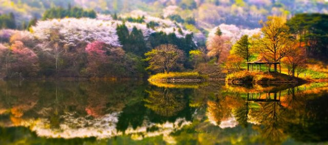 Peisaje superbe oglindite in apa - Poza 9