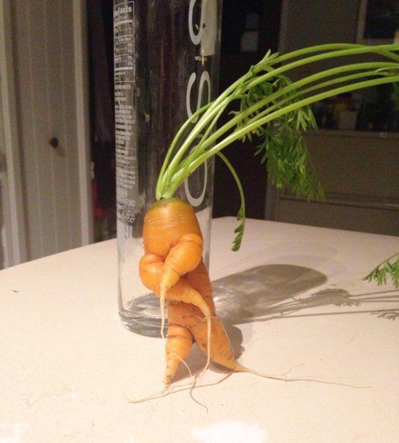 Fructe si legume cu infatisari hazlii - Poza 10