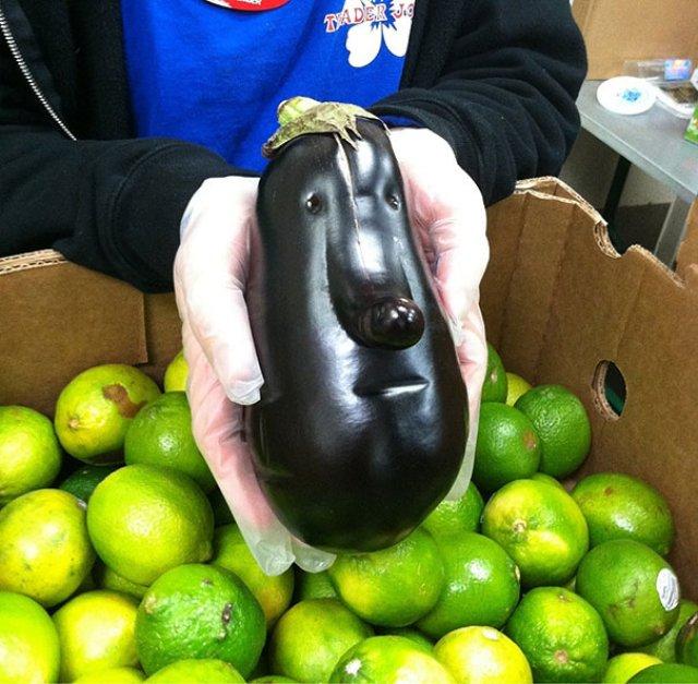 Fructe si legume cu infatisari hazlii - Poza 11