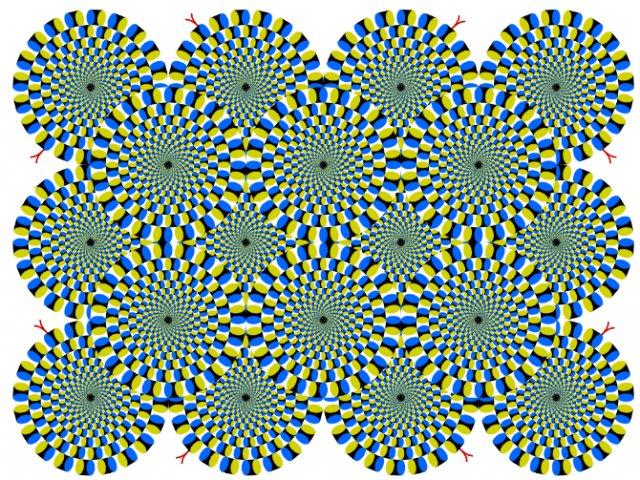 Opt iluzii optice geometrice halucinante - Poza 7