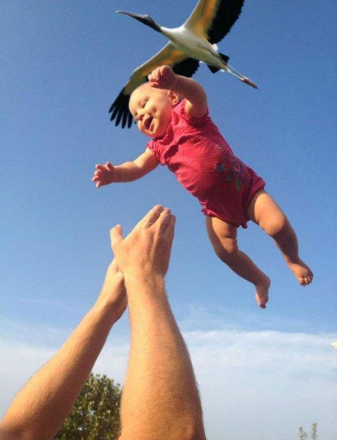 Cele mai reusite fotografii perfect sincronizate - Poza 13