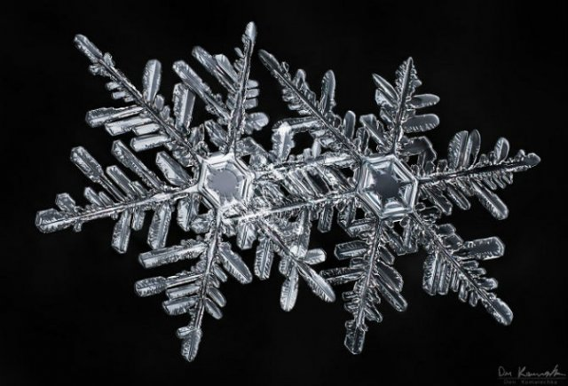 O poveste de iarna: Unicitatea fulgilor de nea, in poze deosebite