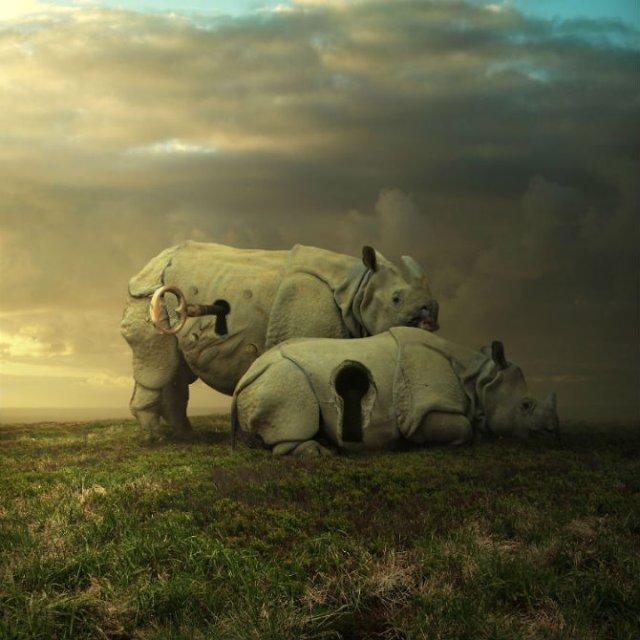 Cum ar trai animalele daca lumea ar fi a lor - Poza 13