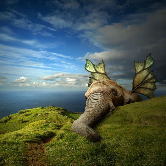 Cum ar trai animalele daca lumea ar fi a lor - Poza 3