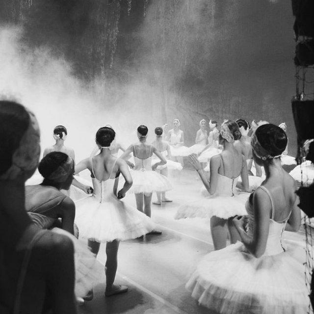 Sufletul picioarelor: Frumusetea nevazuta a baletului - Poza 16