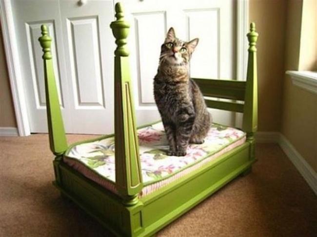 Idei geniale de reutilizare a mobilierului vechi - Poza 13