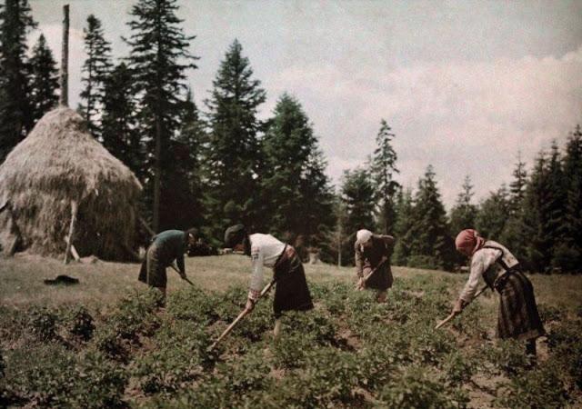 Culorile unei Romanii cenusii: anii '30 in imagini idilice - Poza 16