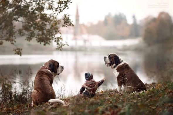 Copilasi si prieteni uriasi, in poze superbe - Poza 3