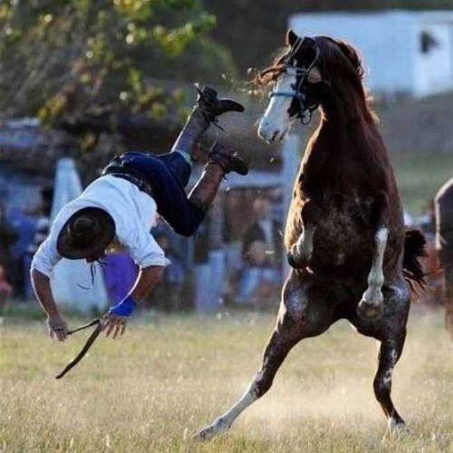 Momente dinaintea dezastrelor, in poze amuzante - Poza 15
