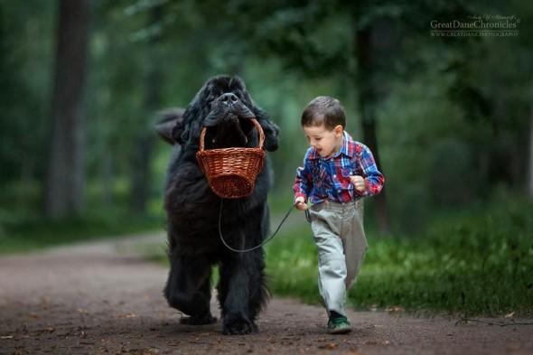 Copilasi si prieteni uriasi, in poze superbe - Poza 10