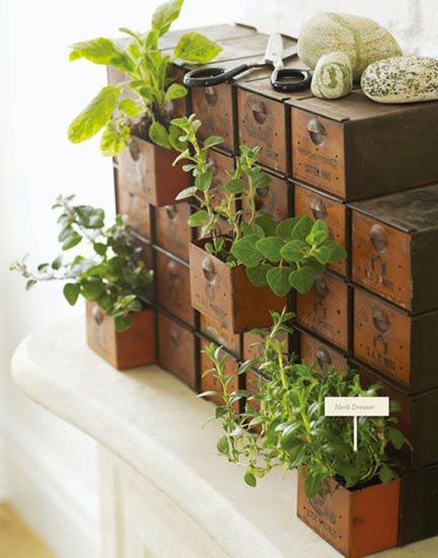 Prospetime neconditionata: Mini-gradini superbe pentru spatiile inchis - Poza 4