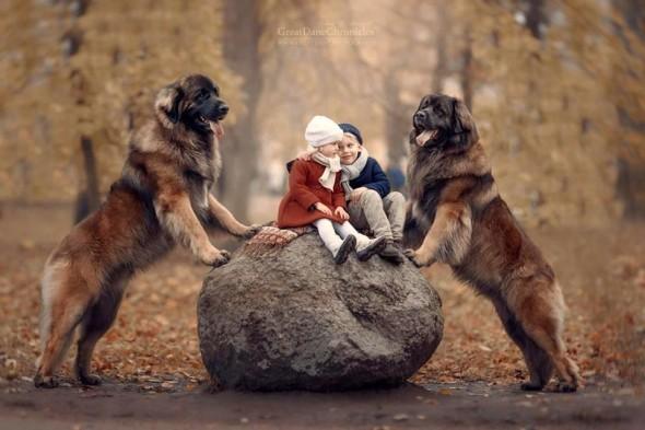 Copilasi si prieteni uriasi, in poze superbe - Poza 12