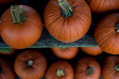 Experti in bucatarie: Timpul perfect de gatire a legumelor - Poza 13
