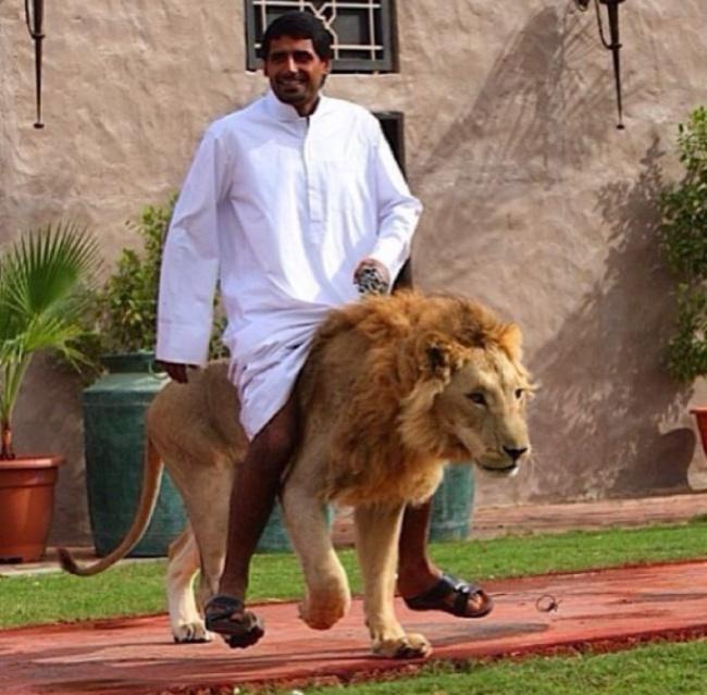 Viata scandalos de luxoasa din Dubai, in poze - Poza 13