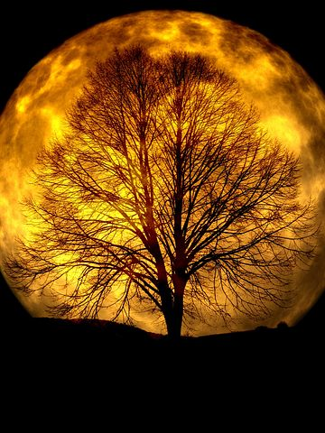 Cele mai frumoase ipostaze ale lunii, in poze superbe - Poza 7